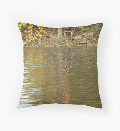 Water is my home! Throw Pillow