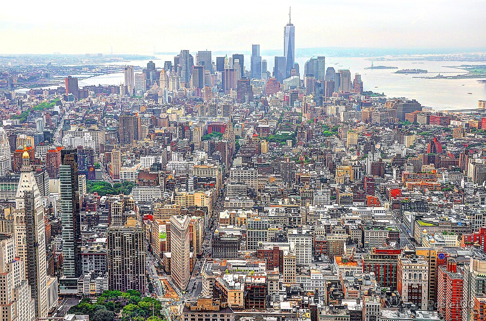 View from the top...New York City by Poete100