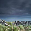 Land, Sea and Sky, Badbea, Caithness, Scotland by Iain MacLean