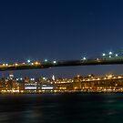 Brooklyn Bridge  3x1 by Andrew Dunwoody