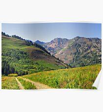 Albion Basin, Utah Poster