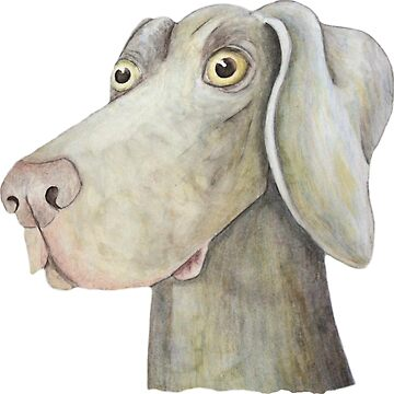 Quirky Weinmaraner in Watercolour by rayemond