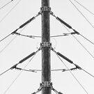 Electric Symetric by Bob Larson