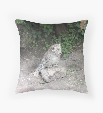 One day I'll be bigger than this rock... Throw Pillow