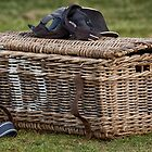 Polo hamper by Judi Lion