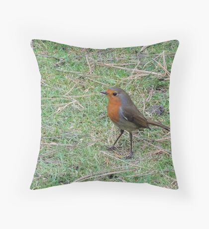 Robin Profile Throw Pillow