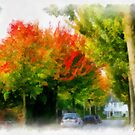 Autumn street in Edegem - Belgium by Gilberte