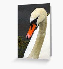 Hallo Greeting Card
