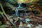 Water Starved Tuscarora Falls by Gene Walls