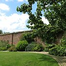 The Walled Garden - Lost Gardens of Heligan by BlueMoonRose