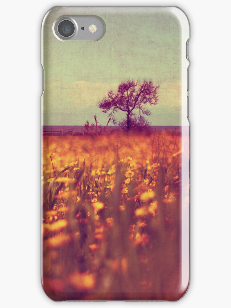 lying in a field of daisies by Ingrid Beddoes