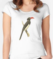 Coronated Hornbill Bird Illustration by William Swainson Women's Fitted Scoop T-Shirt