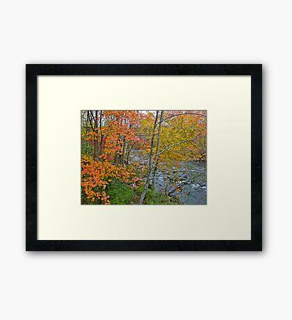 Perkiomen Creek - Perkiomenville PA - Autumn Foliage Framed Print