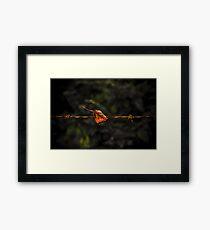 Leaf on Wire Framed Print