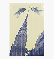 crysler gold fish Photographic Print
