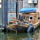 Left to rust by Paulo van Breugel