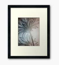 Floral Rising  Framed Print