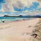 Lutregala Reserve, Bruny Island. by melhillswildart