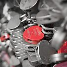 Love Locks by Colin  Ewington