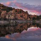 Splitting Twilight by Bob Larson