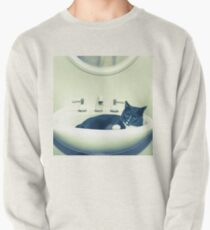 Cat in the Sink Pullover