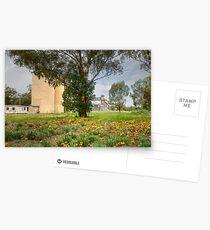 Wild Gazaneas Stockinbingal  Postcards