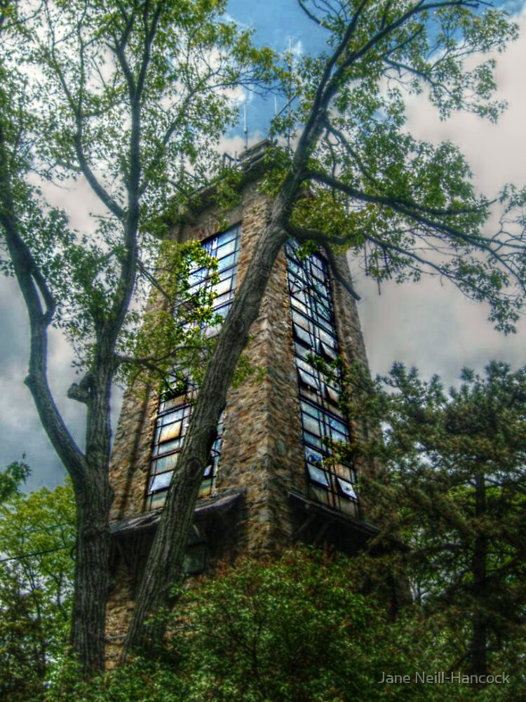 Quot Ryecliff Lookout Tower On Ramapo Mountain Quot By Jane Neill