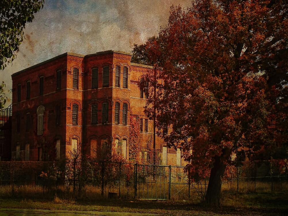 Homeopathic Asylum  by PineSinger