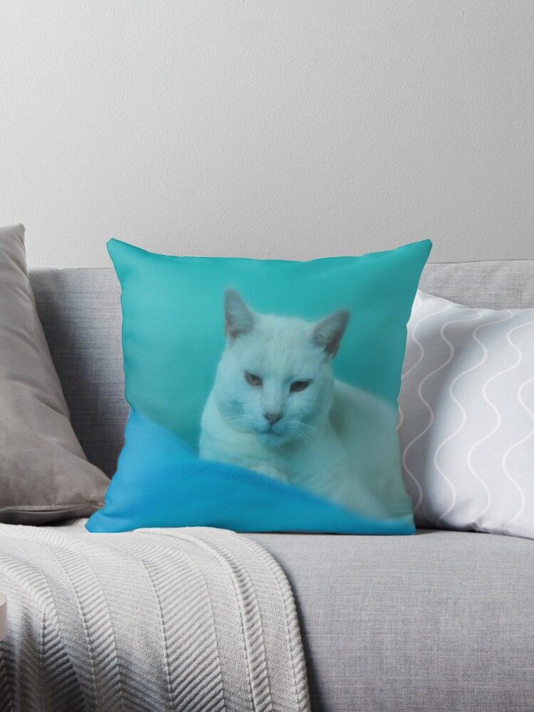 THROW PILLOW FOR CAT LOVERS by Colleen2012