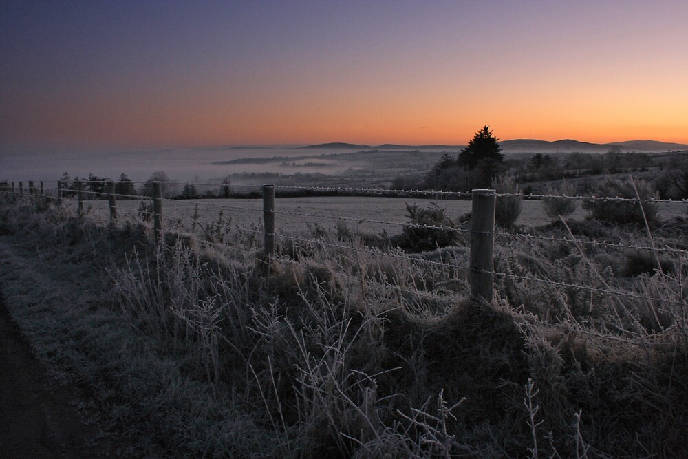 Frosty Dawn by Adrian McGlynn