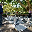 The Chess Game by Chris  Randall