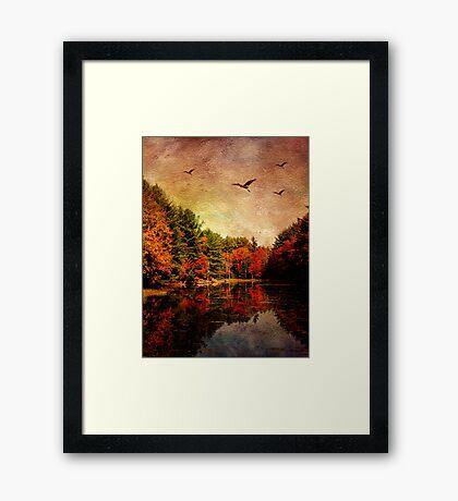 Symbolic Migration Framed Print