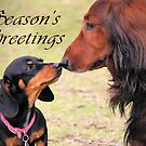 A very doxie Christmas 12 by Sarah Guiton