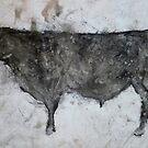 Angus Bull by James Kearns