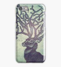 Spirit of the Sea iPhone Case/Skin
