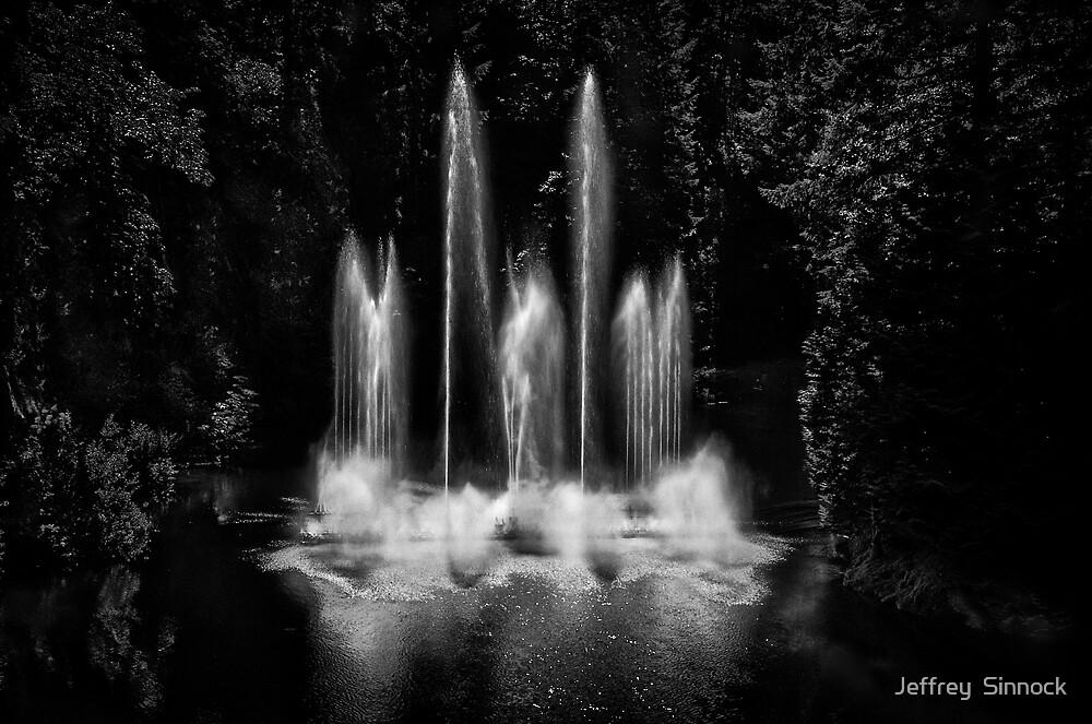Light Show by Jeffrey  Sinnock