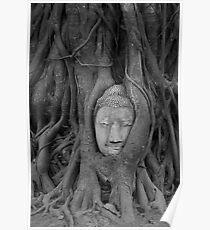 Ayutthaya Buddha #2 Poster