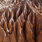 Mungo Erosion by David  Piko