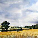 Fields of Gold by Glenn Marshall
