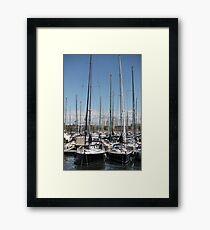 yacht masts  Framed Print