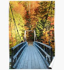 Bridge into the Woods Poster