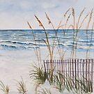 Anna Maria Island Florida by derekmccrea