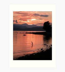 Sunset Heron Art Print