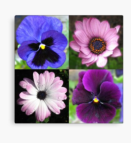 Cute Pansies and Daisies Collage Leinwanddruck