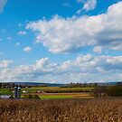 Farm In Lewisburg PA by Penny Fawver