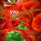 I promise myself a rose garden by Annabellerockz