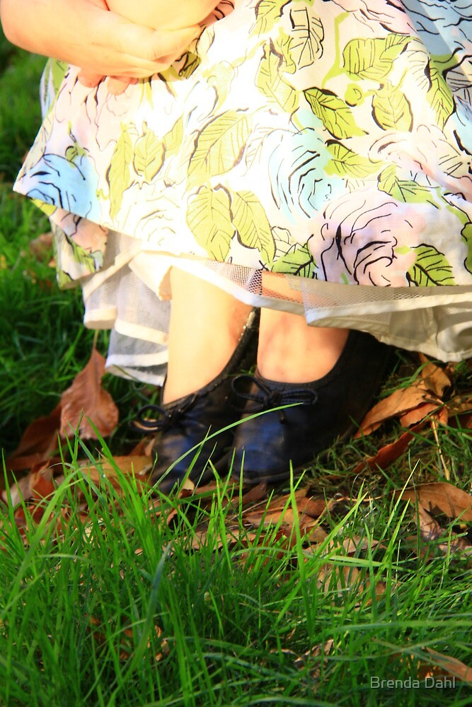 Princess in Fairy Land by Brenda Dahl