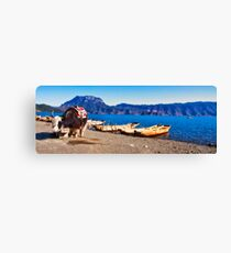 Yak at Logo Lake Canvas Print