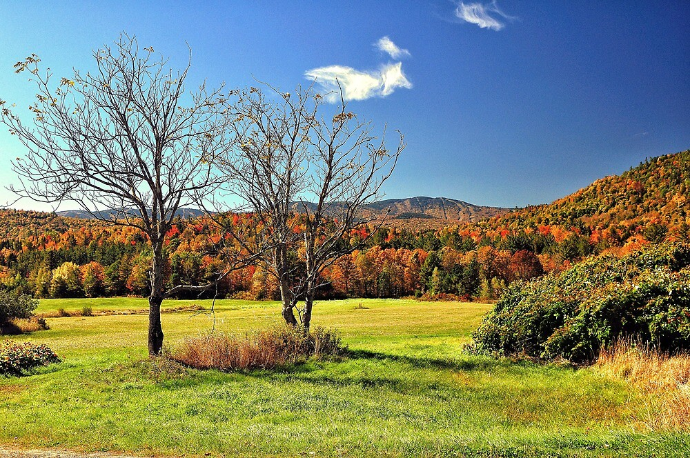 Newry , Maine by fauselr