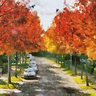 A.Vesalius avenue - Edegem - Belgium by Gilberte